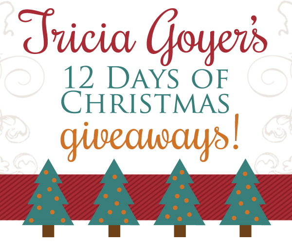 goyer-christmas-giveaway