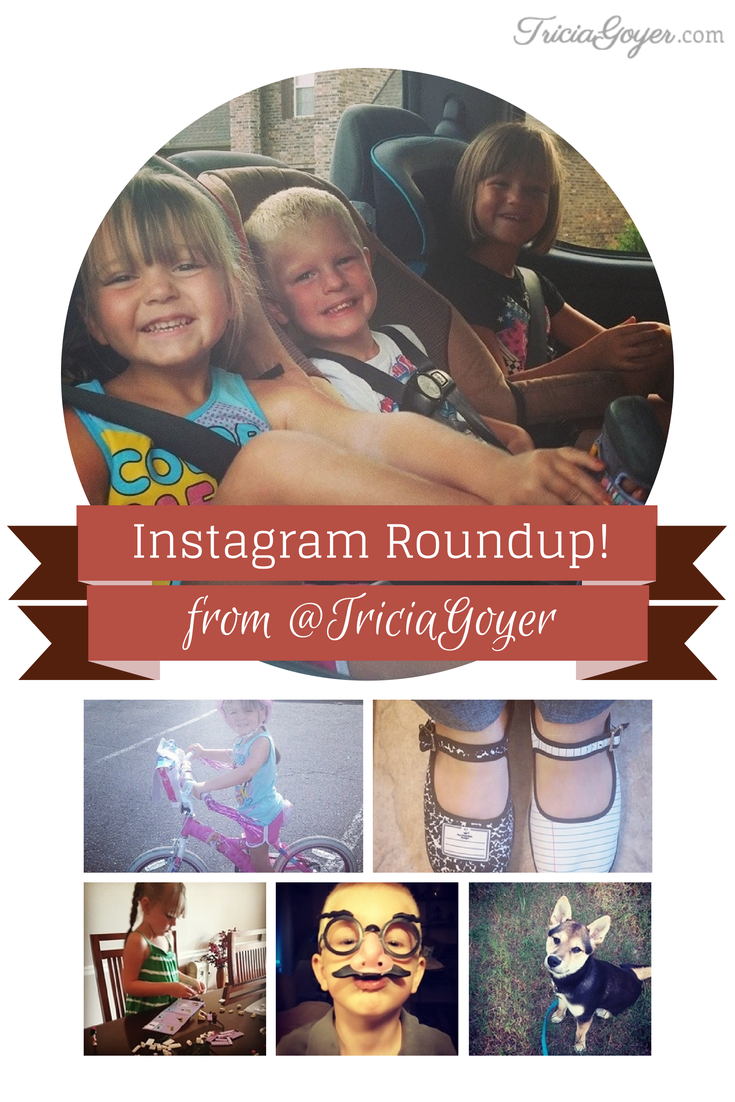 Author Tricia Goyer's Instagram Roundup for August! - TriciaGoyer.com