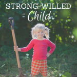 Surviving The Strong-Willed Child