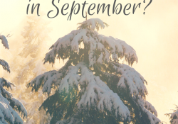 Why Think About Christmas in September - TriciaGoyer.com
