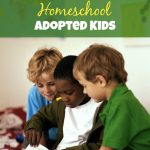 How to Homeschool Adopted Kids