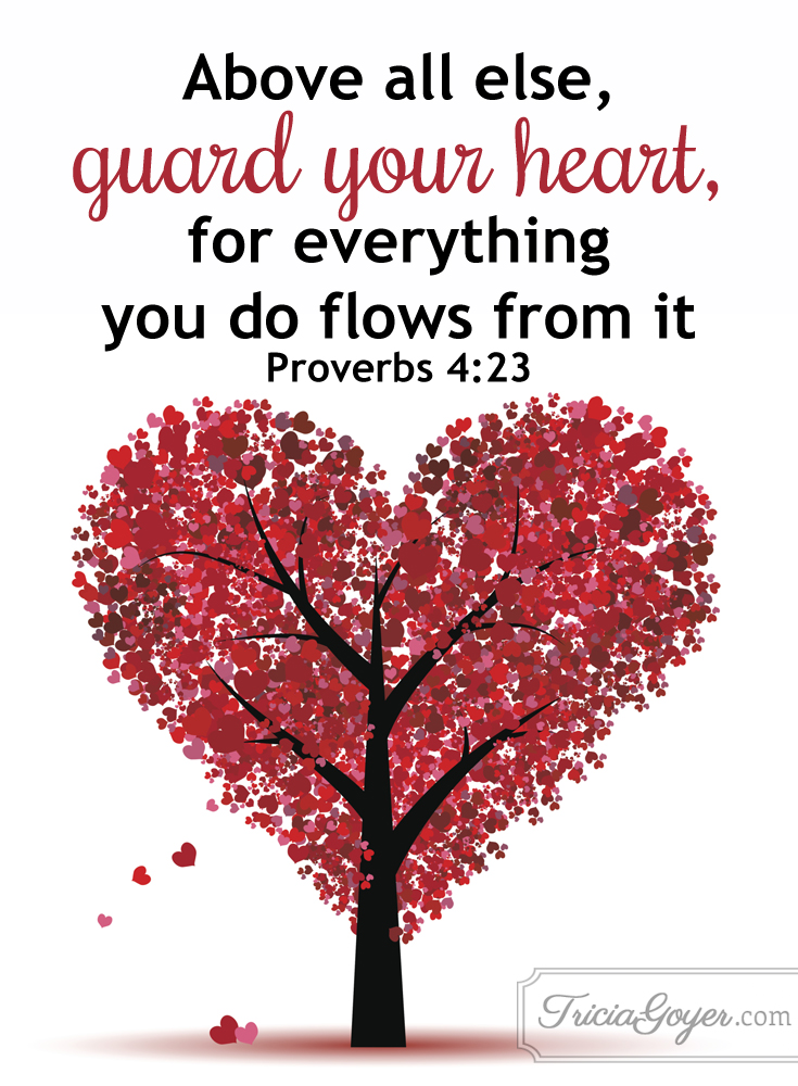 Guard your heart proverbs 423 freerunsca Image collections