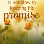 Keeping His Promise | 2 Peter 3:9