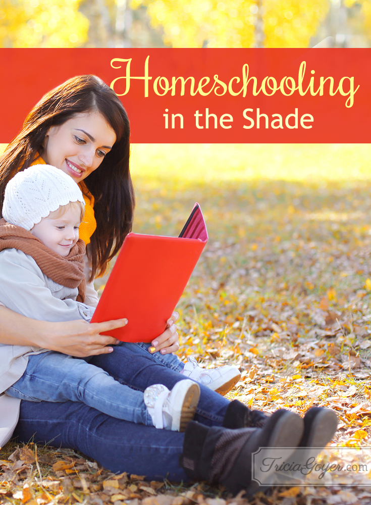 Homeschooling in the Shade - triciagoyer.com