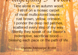 An Ode to Fall, a Poem