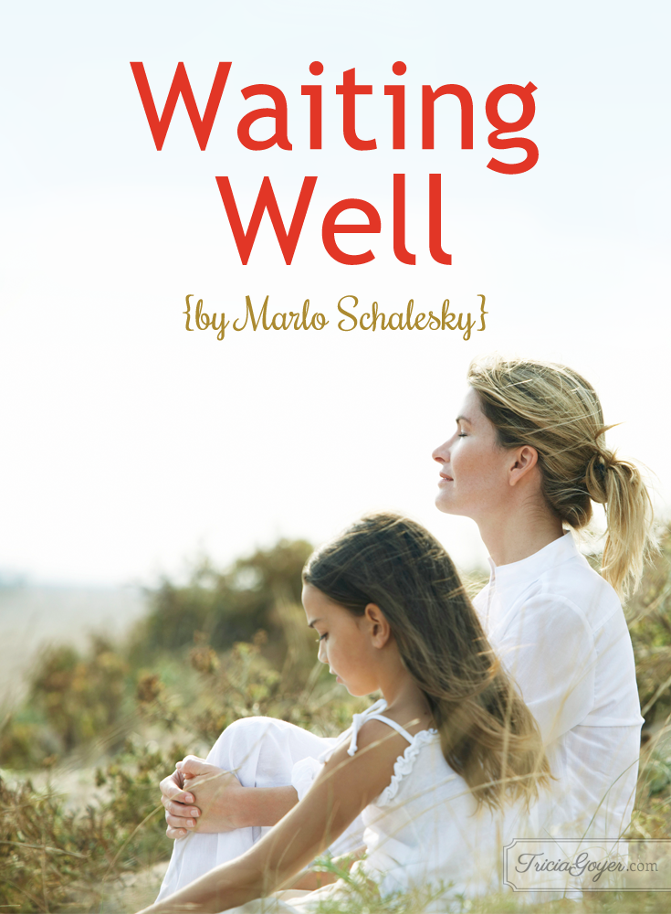 Waiting Well by Marlo Schalesky