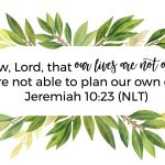 Not Our Own | Jeremiah 10:23