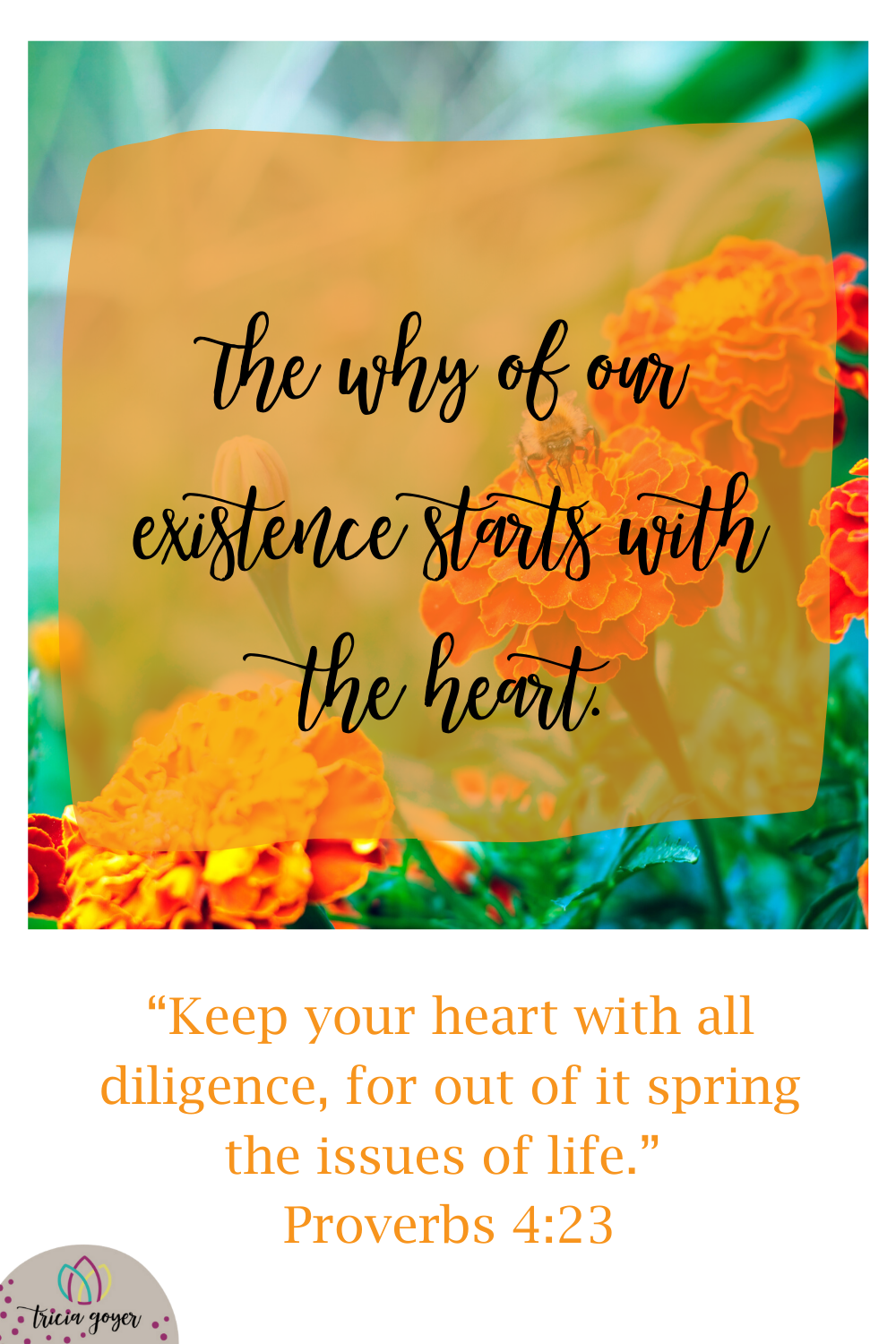The why of our existence starts with the heart as it says in Proverbs 4:23