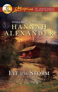 Inside a Writer's Head | A Q&A with Hannah Anderson (and a Giveaway)