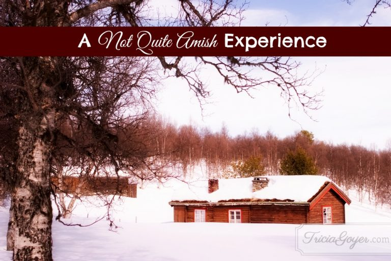 A Not Quite Amish Experience | 12 Days of Christmas Giveaways Day 12