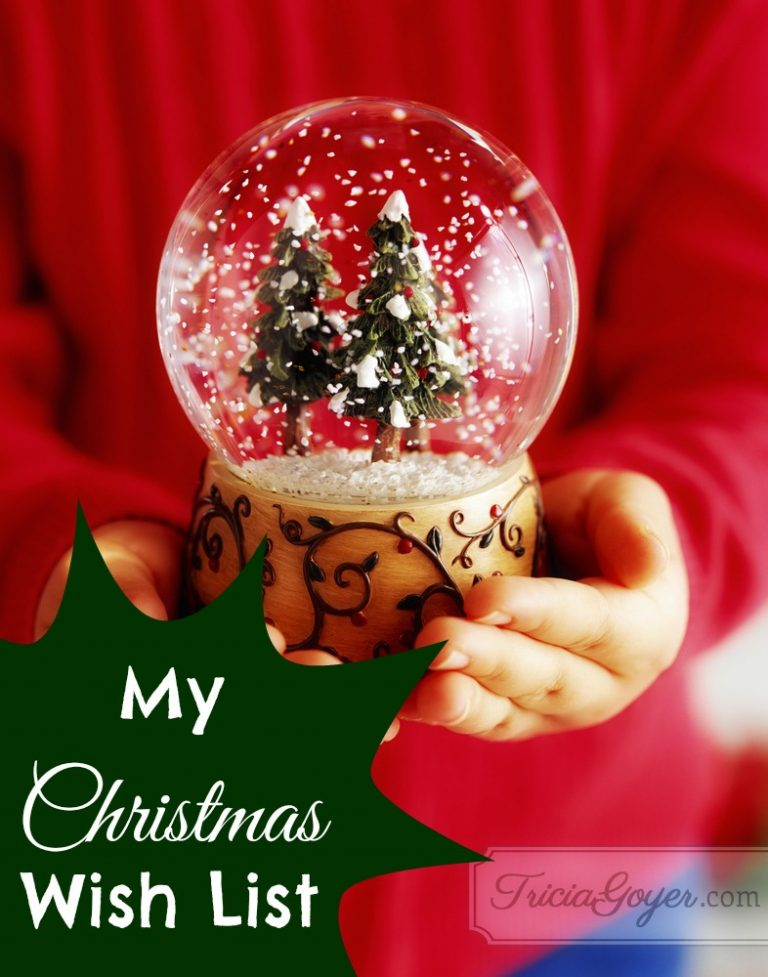 My Christmas Wish List | 12 Days of Christmas Giveaways Day 9