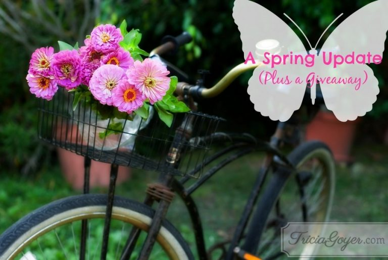 A Spring Update (Plus a Giveaway)