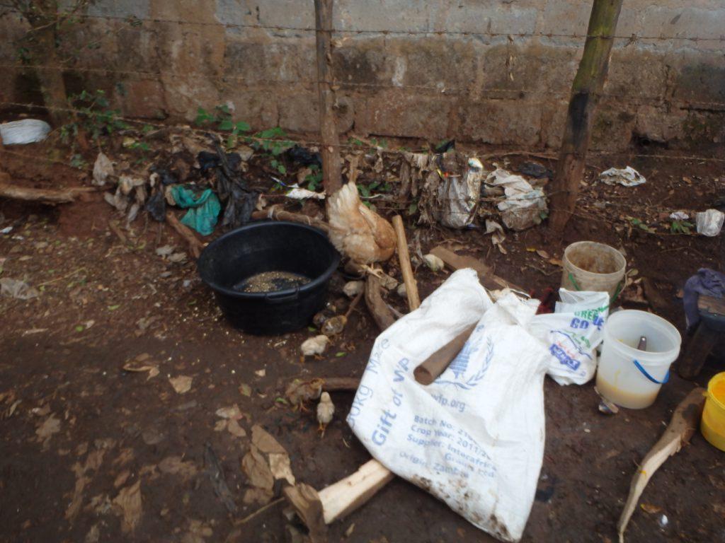 Walkway in the Kibera slum