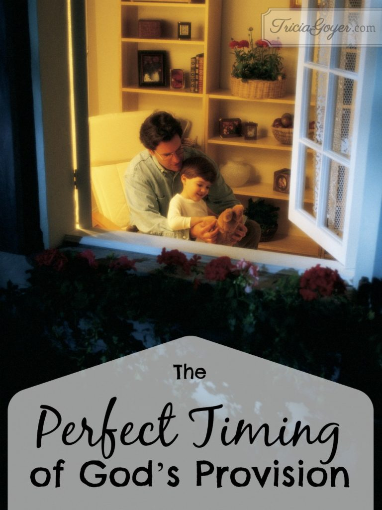 The Perfect Timing of God's Provision