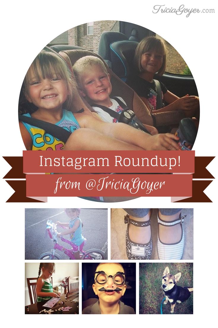 August's Instagram Roundup!
