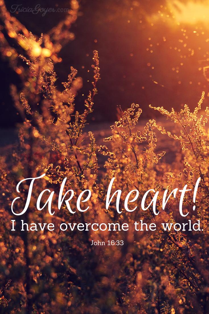 Saturday Scripture – John 16:33