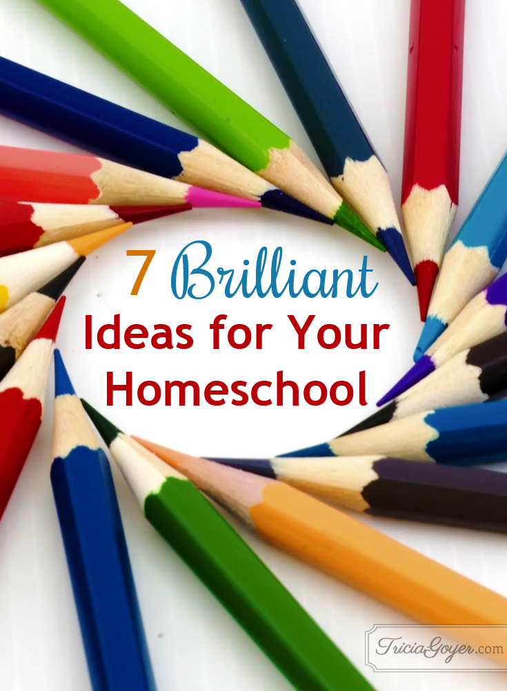 7 Brilliant Ideas for Your Homeschool