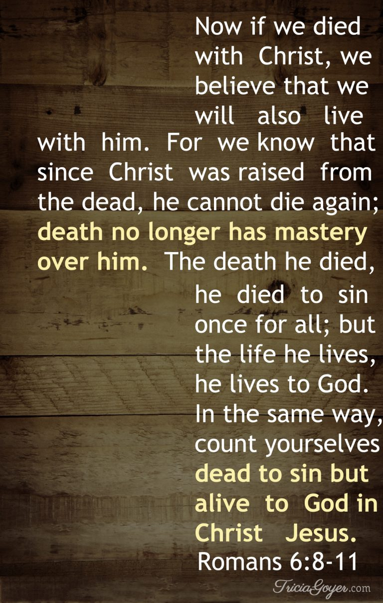 Alive in Christ Jesus | Romans 6:8-11