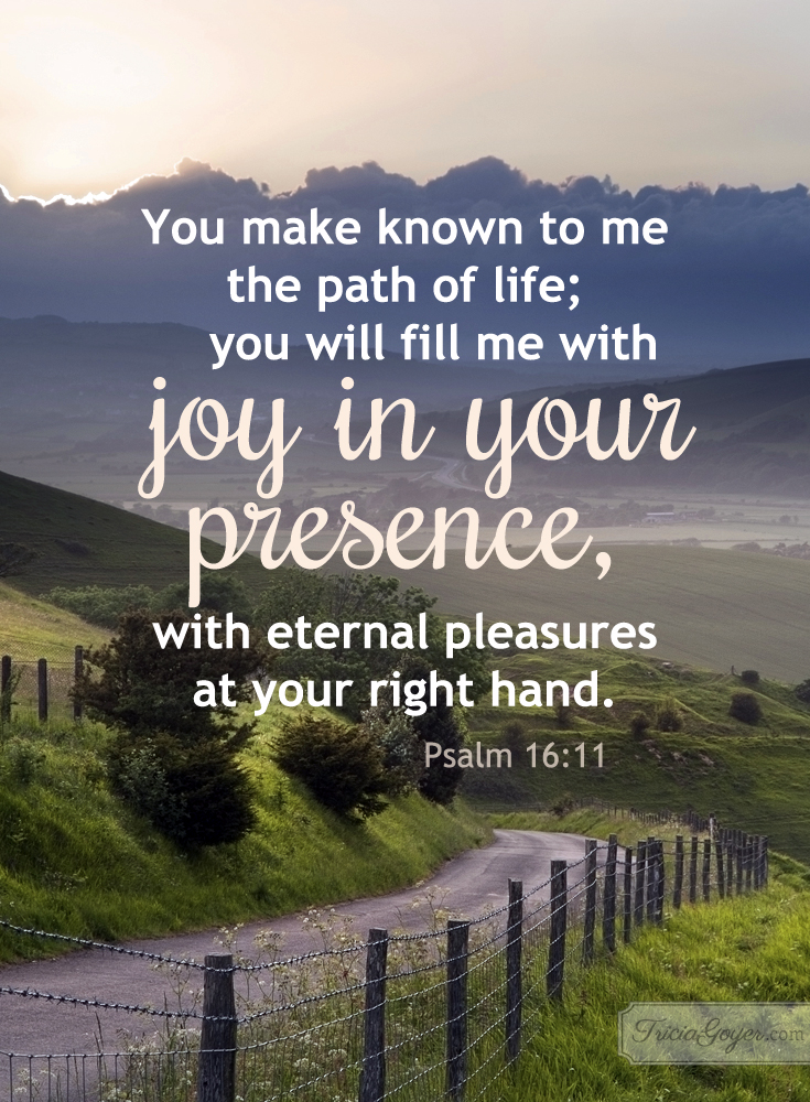 Joy in Your Presence | Psalm 16:11