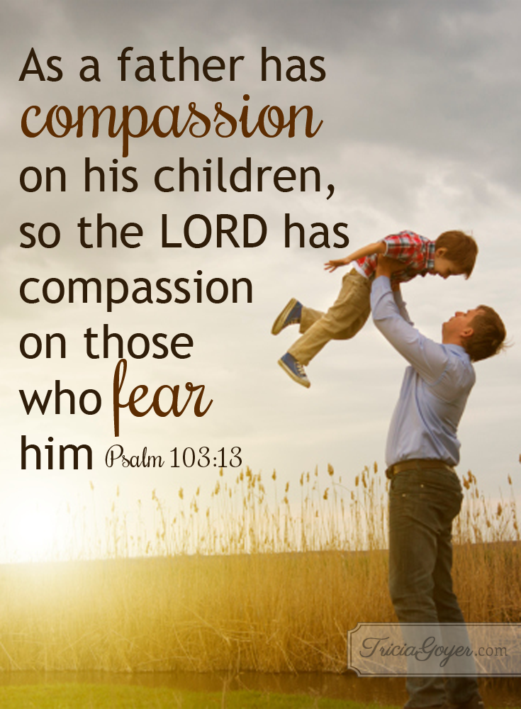 A Father S Compassion Psalm 103 13 Tricia Goyer