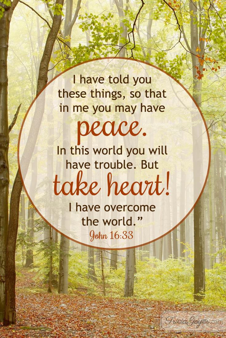 Take Heart! | John 16:33