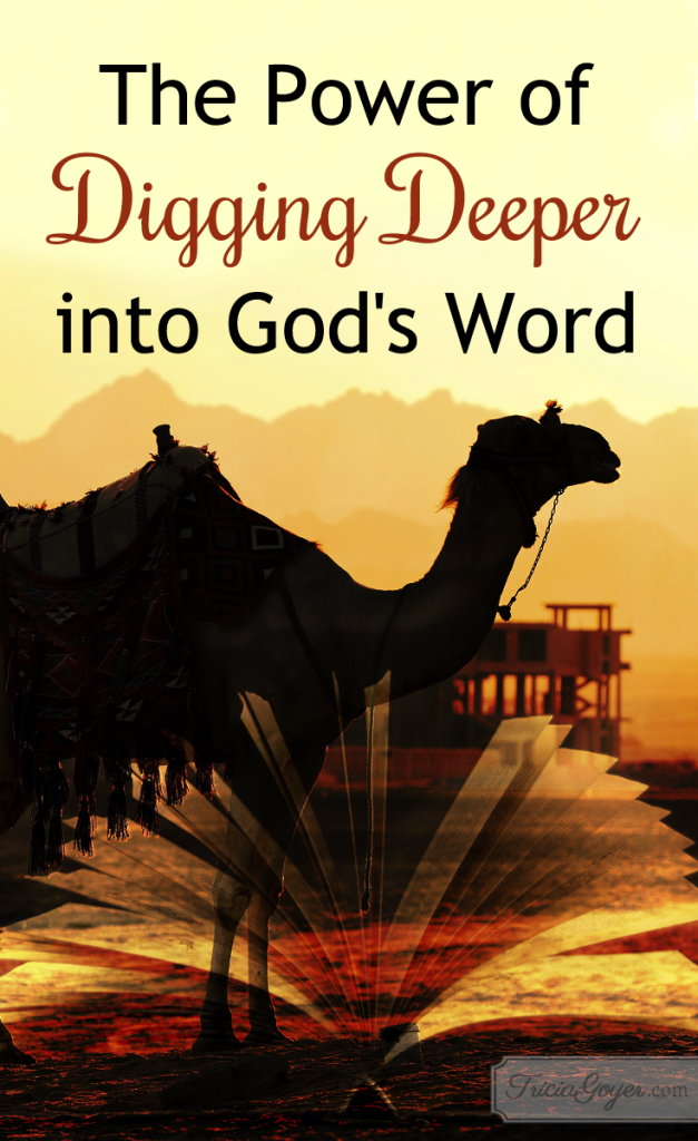 "Discover the power of digging deeper into God's Word with ""That the World May Know"""