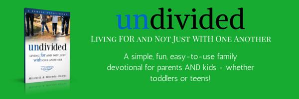 undivided-banner