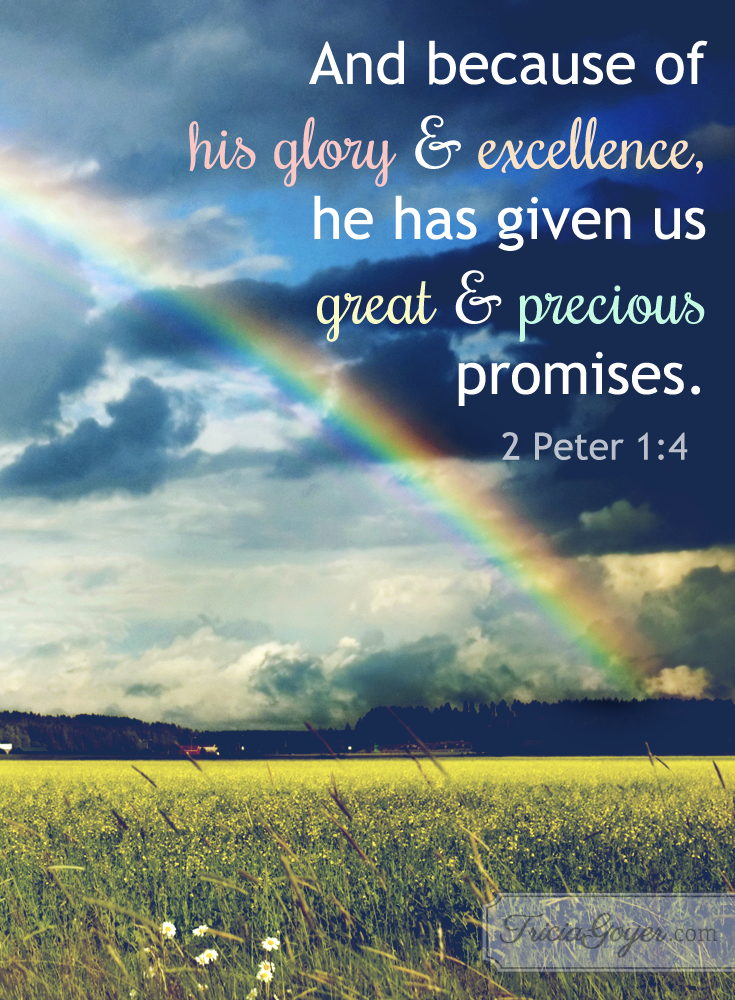 2 Peter 1:4 | Great & Precious Promises