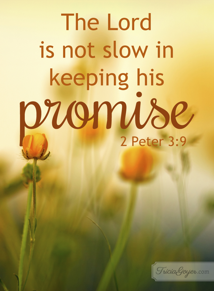 The LORD is not slow in keeping his promise! 2 Peter 3:9