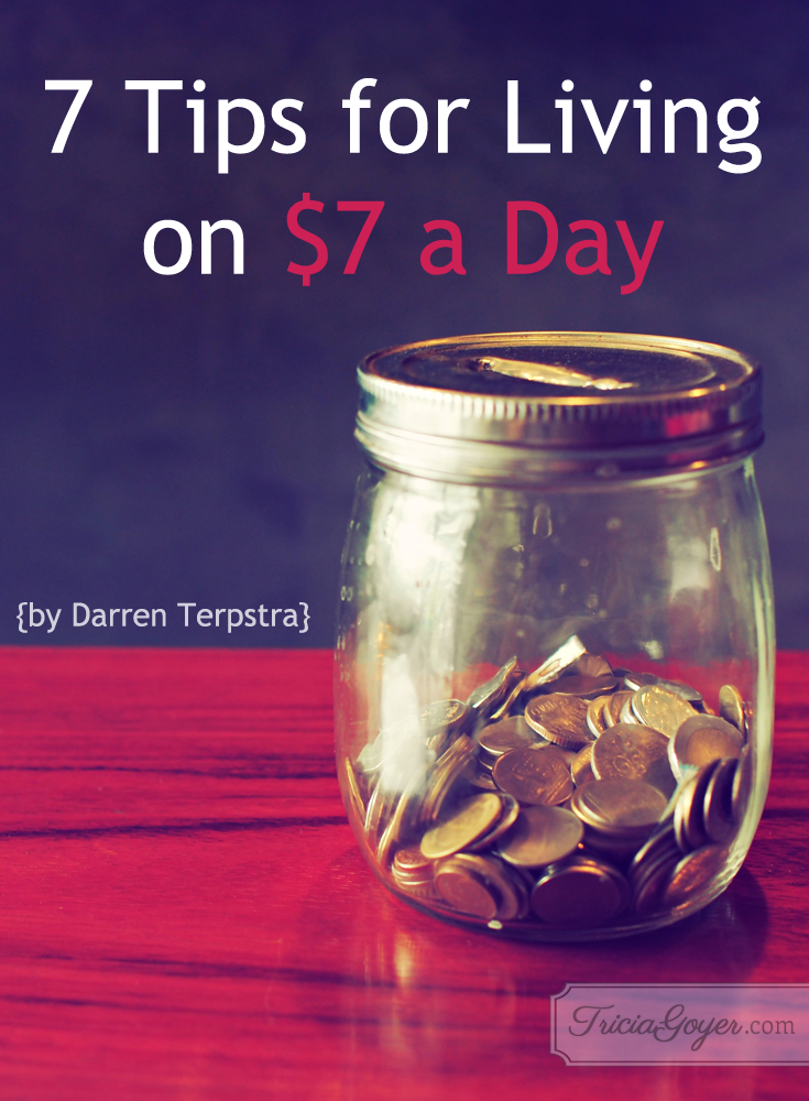 7 ways to live on 7 dollars a day