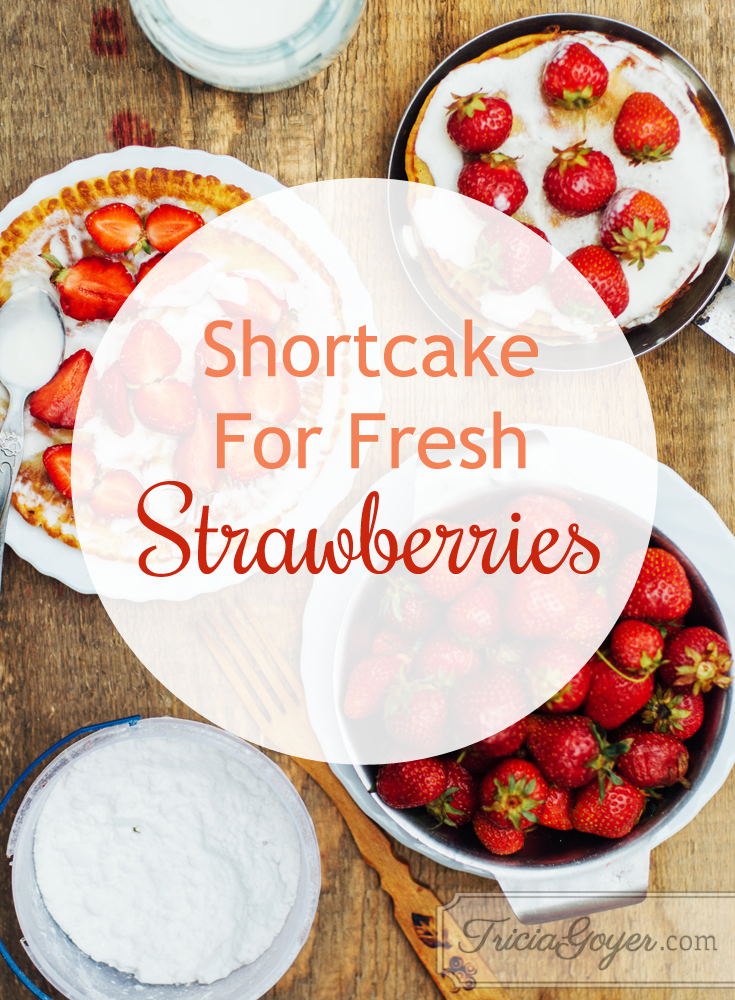 Shortcake For Fresh Strawberries