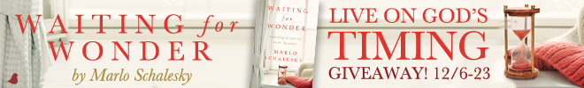 waiting-for-wonder-nc-banner