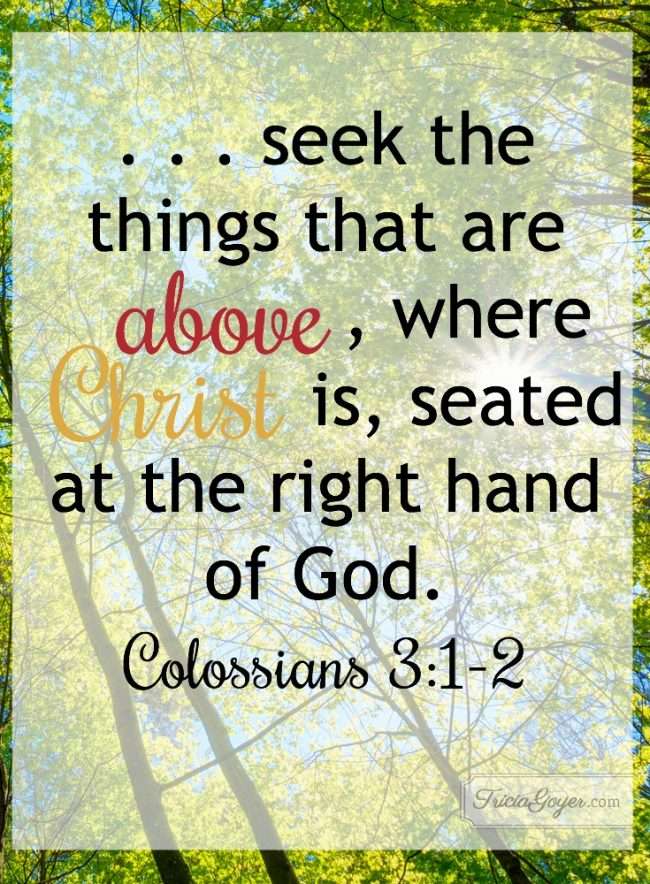 Seek the Things That Are Above | Colossians 3:1-2