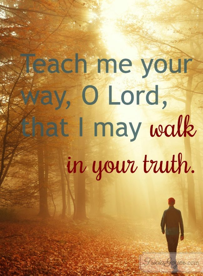 Walk in Truth | Psalm 86:11