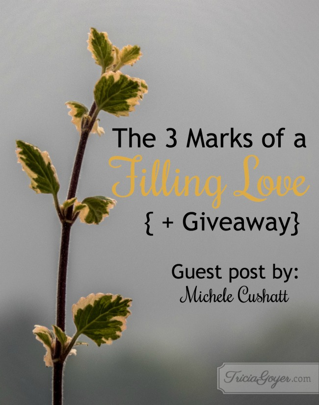 The 3 Marks of a Filling Love | Guest Post {+ Giveaway}