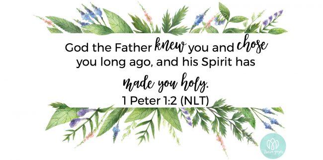 Chosen | 1 Peter 1:2