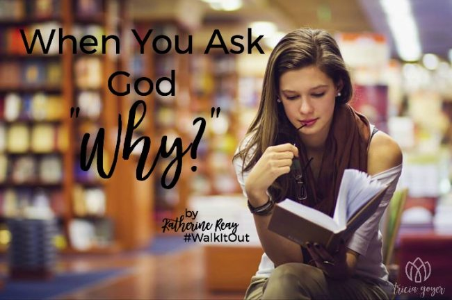 when you ask god why katherine reay walk it out story