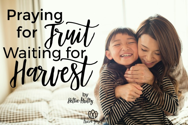 Praying for Fruit; Waiting for Harvest | Hettie Brittz