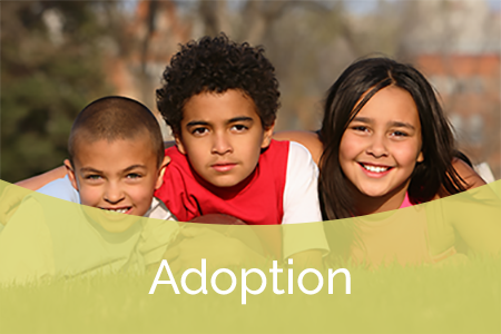 How to Adoption