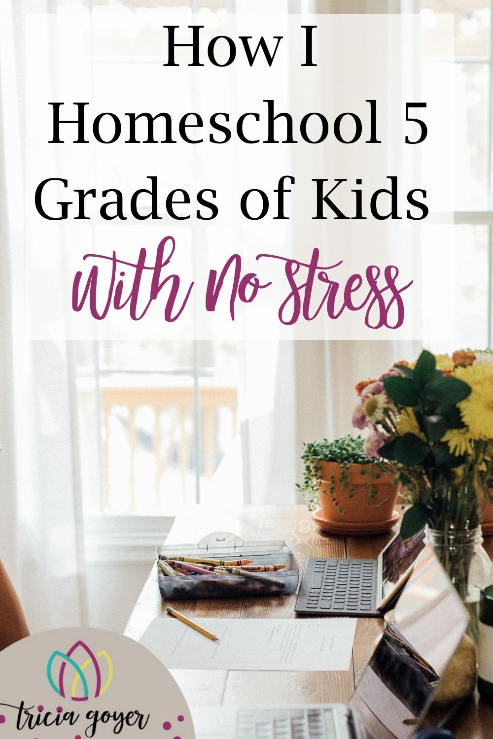 People are amazed that I homeschool with no stress (or very little) with FIVE grades all at once without losing my mind. I'm actually amazed too. When I first began so many years ago, I could not have imagined that I could have a large family AND teach homeschool with no stress. Multiple grades were intimidating, that's for sure! Tricia Goyer shares her secrets on the blog!