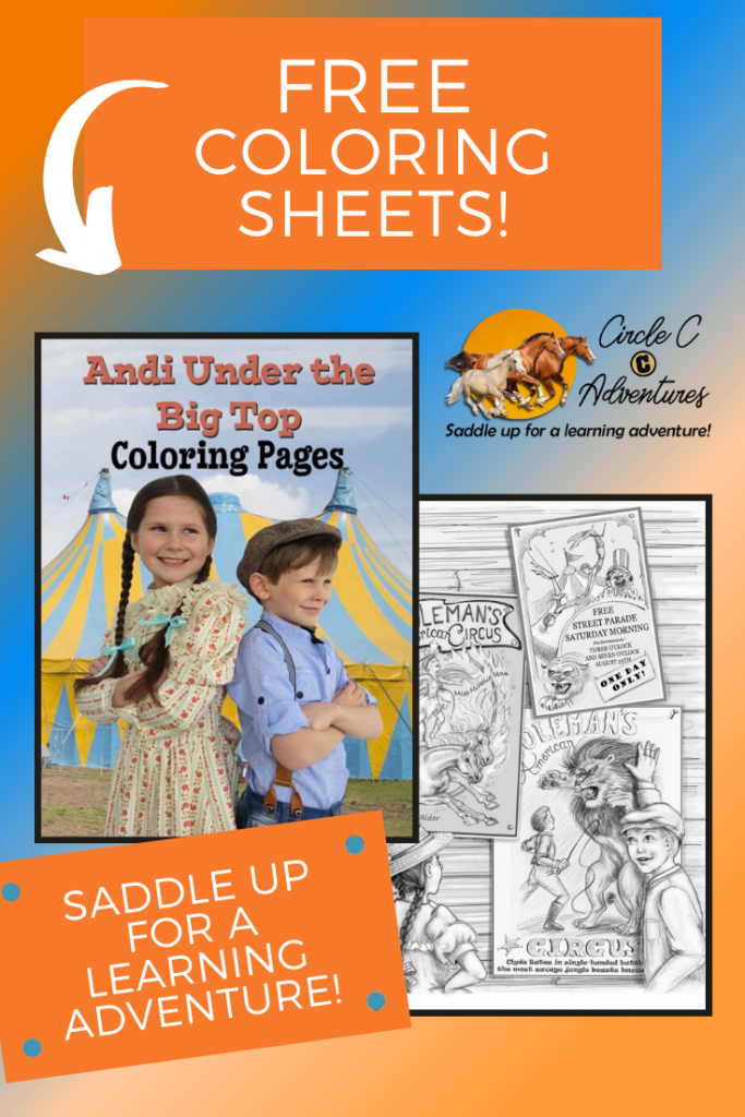 Coloring Pages with Homeschool Resources for Girls Who Love Horses