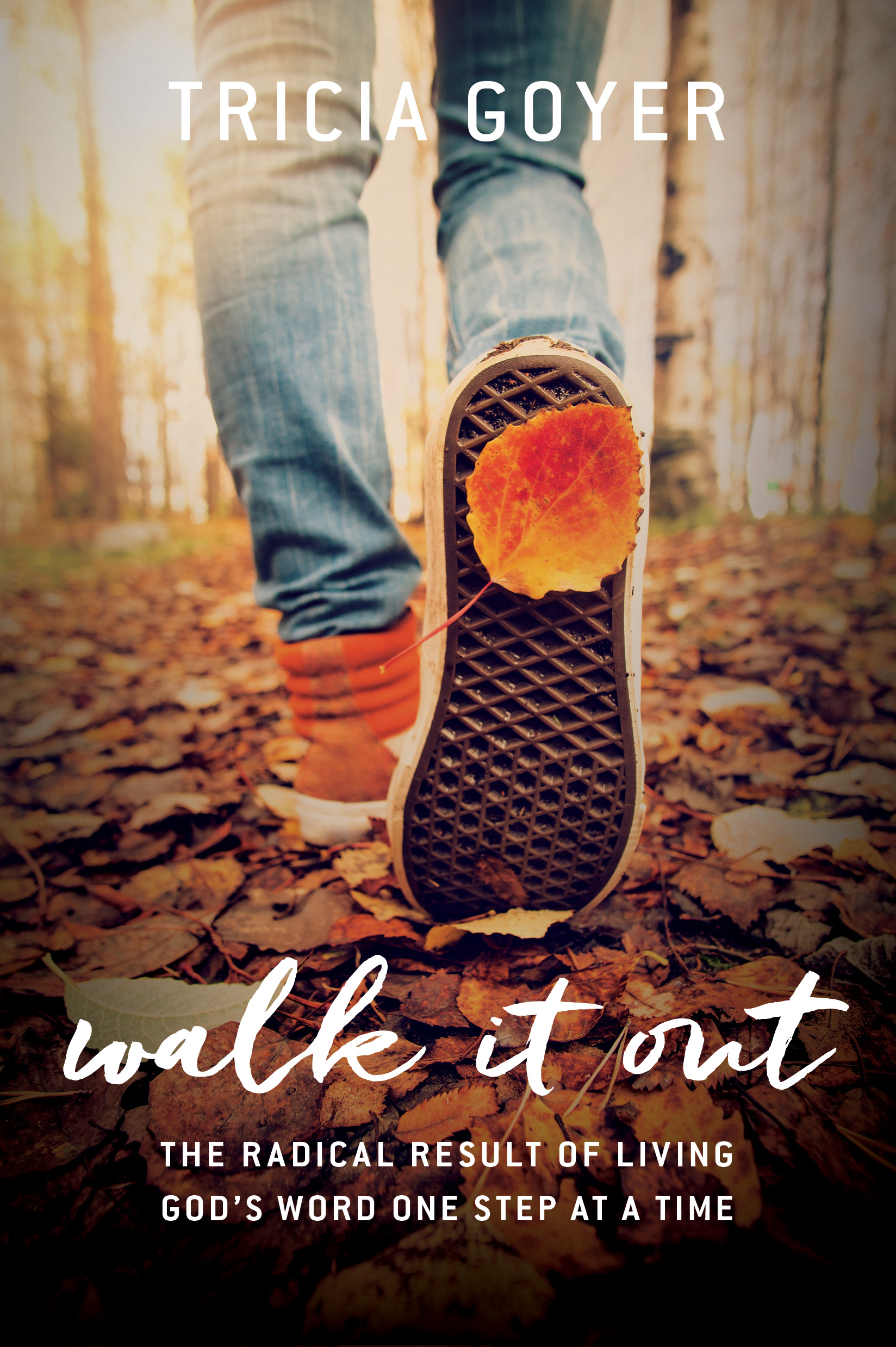 Walk it Out book excerpt in Tricia Goyer's blog post Step Out of Your Comfort Zone