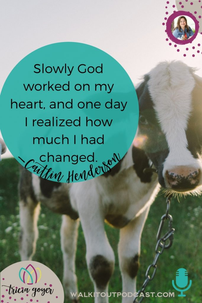 WIO #163: Faith, Farming, and Family with Caitlin Henderson. I so enjoyed chatting this week with Caitlin Henderson about her new book Faith, Farming, and Family! If you've ever had a dream of living on a farm, you're going to love this episode!